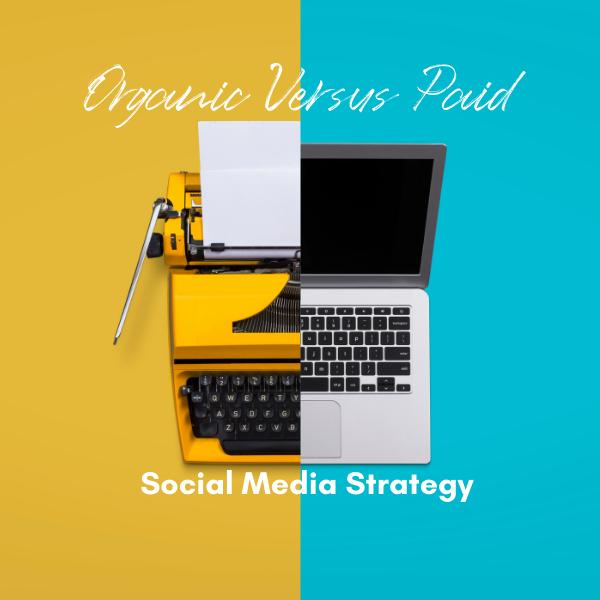 Organic V Paid Social Media Strategy